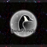 Profile picture of GooseTronics