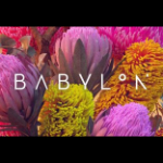 Profile picture of Babylon Festival